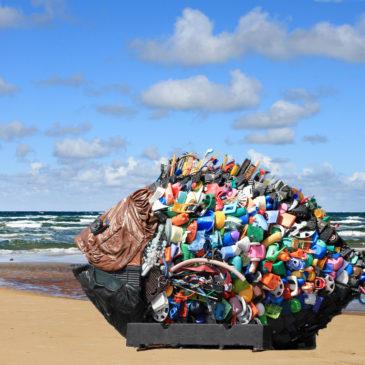 Global oder National – Wie sollte Umweltschutz angegangen werden?